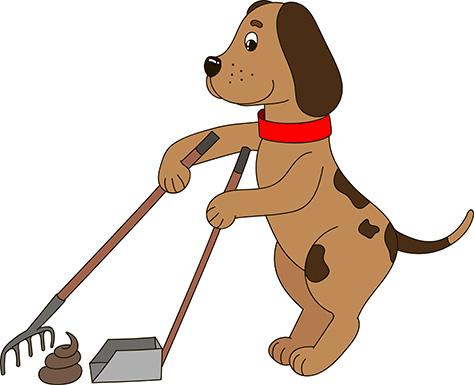 Dog Waste Removal Dog Poop Removal Wilmington Delaware