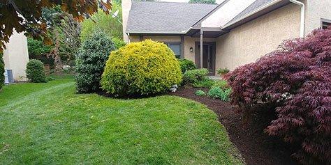 Delaware Landscaping Service